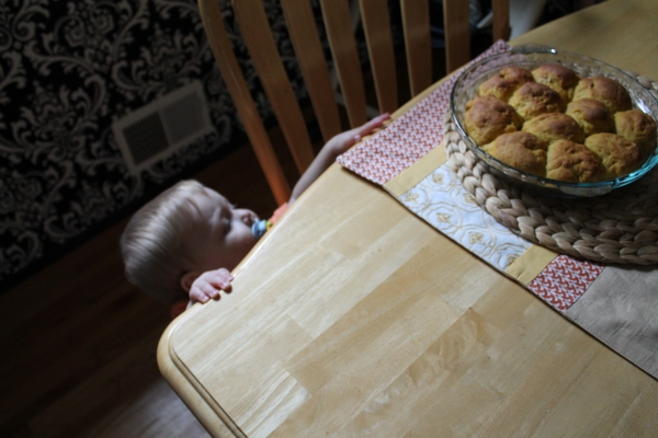 Babies Love Pumpkin Bread, Too