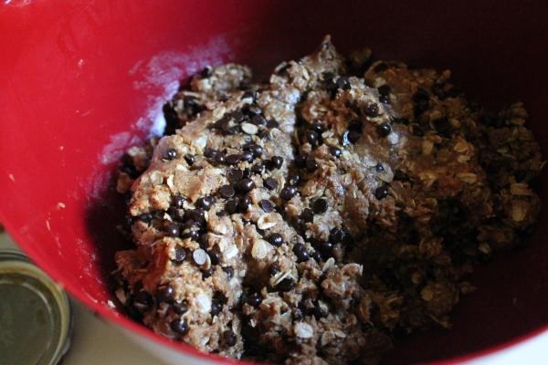 Peanut Butter Oatmeal Mixture