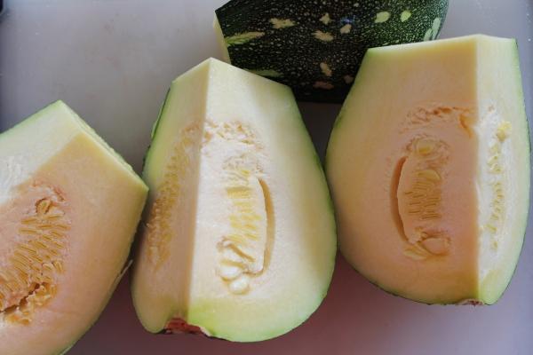 Zucchini for Shred